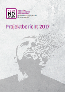 Projektbericht Need NO Speed 2017